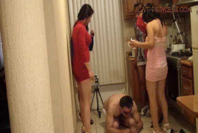 Dom-princess - Scat-princess - Toilet Man Abuse In The Kitchen Part 2 Tifany Sd Dom-princess